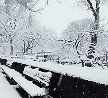 Snowy Bench by mar78me