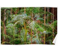 Deep In The Forest, Tamborine Mountain Poster