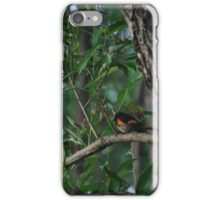 Oriole  iPhone Case/Skin