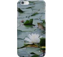 White Water Lily iPhone Case/Skin