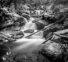 Keppel Falls , Marysville by Christine Wilson