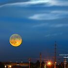 Super Moon by Herb Spickard