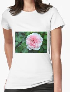 Pink rose macro on a texture on green leaves. Womens Fitted T-Shirt