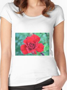 Red rose on a green background. Women's Fitted Scoop T-Shirt