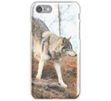 Wolf roaming iPhone Case/Skin