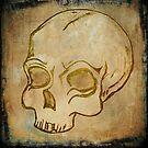 skull  by Christian Scheuer