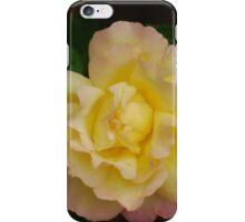 Rose 3 iPhone Case/Skin