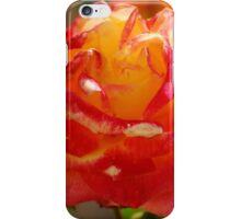 Rose 5 iPhone Case/Skin