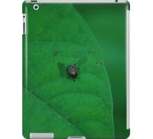 Invader  iPad Case/Skin