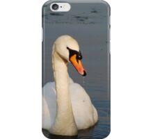 Swan 1 iPhone Case/Skin