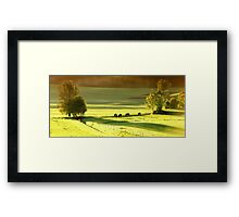 horses on green meadow Framed Print