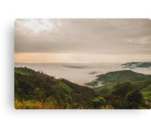 Forested mountain Canvas Print