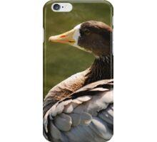 Brown Goose iPhone Case/Skin