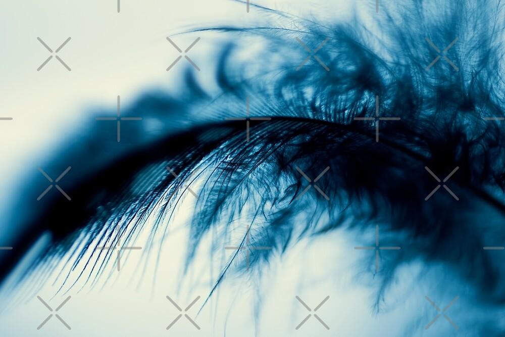fall in blue by Ingrid Beddoes