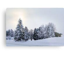 The Winter Metal Print