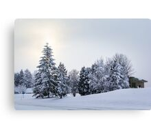 The Winter Canvas Print