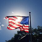 American Flag by letterw