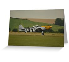 Frankie on take off... Greeting Card