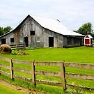 INDIANA FARM COUNTRY by Pauline Evans