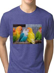 Love Parrots Birds  Tri-blend T-Shirt