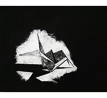 Scratch Crane Photographic Print
