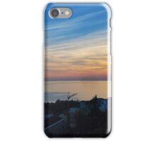 Panoramic View iPhone Case/Skin