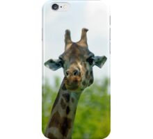 Quirky giraffe looking at you iPhone Case/Skin