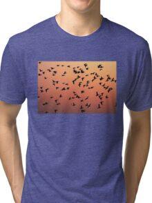 Flock f Birds at Sunset Tri-blend T-Shirt