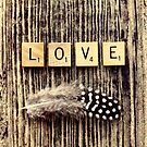 love by Ingrid Beddoes