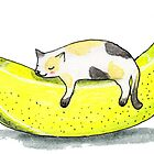 Banana cat by BeeHappyShop