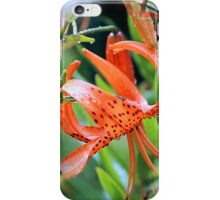 Turk Cap Lilies After Morning Rain iPhone Case/Skin