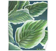 Hosta Plant Leaves Painting Poster