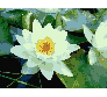 8bit lotus Photographic Print