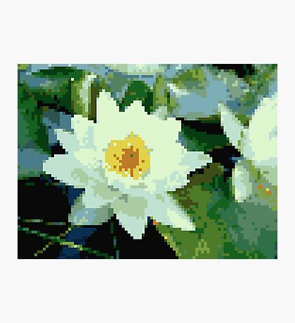 8bit lotus Photographic Print
