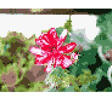 8 bit tongue flower Photographic Print