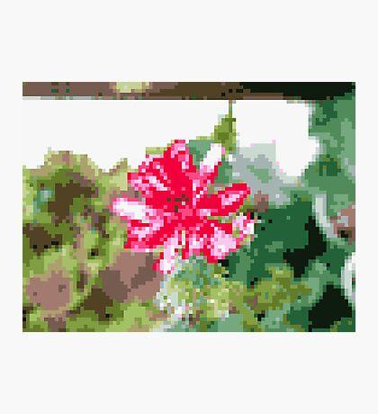 8 bit tongue flower Photographic Print