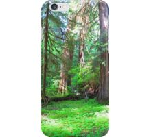 Forest in Olympic National Park iPhone Case/Skin