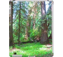 Forest in Olympic National Park iPad Case/Skin