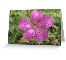 Pinking Sheer Greeting Card