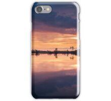 Color Eruption iPhone Case/Skin