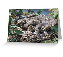 Crowded House Greeting Card