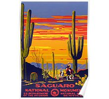 Saguaro National Park Vintage Travel Poster Poster