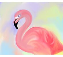 Pink Flamingo With Pastel Background Print Photographic Print