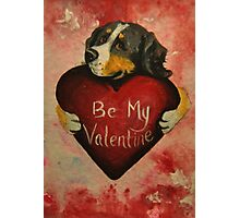Bernese Mountain Dog~Be My Valentine~~LOVE Photographic Print