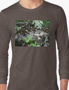 ladybugs in love Long Sleeve T-Shirt