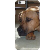 BC laying iPhone Case/Skin