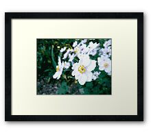 different 8bit flower Framed Print