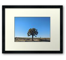 joshua tree (small) Framed Print