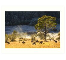 Australian Winter Art Print