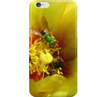 Aughochlora Sweat Bee iPhone Case/Skin
